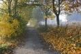 prijezdova cesta_podzim