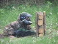 Paintball :: foto